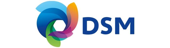 Partnerlogo_DSM